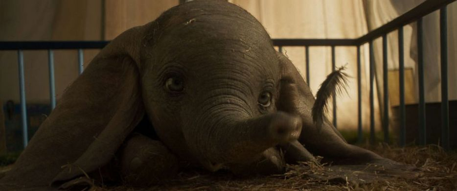 Dumbo en version live action !